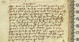Oxford, MS Balliol 354, p.448 (detail)